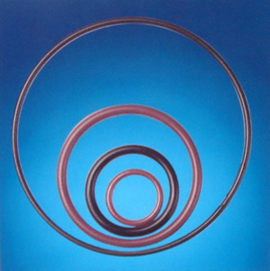全包氟塑胶O形圈