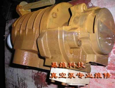 进口真空泵修理
