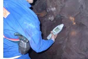 尼通手持式矿石分析仪