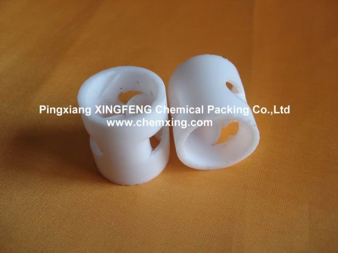 25mm Plastic Pall Ring