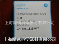 whatman GF/F:0.7μm玻璃纖維濾紙1825-025 1825-047 1825-125