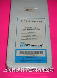 whatman Partisil HPLC柱4229-001實物照 4229-001