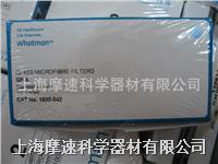 GE whatman GF/A:1.6μm玻璃纖維濾紙1820-042 1820-042