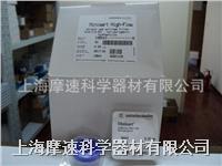 賽多利斯SARTORIUS 16541-K Minisart-PES一次性針頭濾器 16541-K