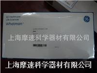 whatman QM-A石英纖維PM2.5濾紙1851-101 101.6MM