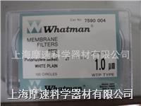 Whatman 7590-004 聚四氟乙烯膜PTFE 47MM 1.0um 7590-004