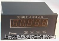 数字显示仪 SQY01