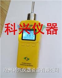 泵吸式氨气检测仪 XK-900型