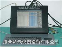 超声跨孔检测仪