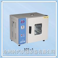 数显电热鼓风干燥箱系列
