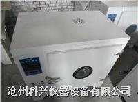 电热鼓风干燥箱 101型