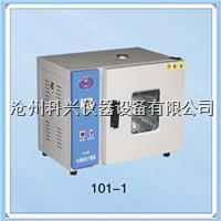 混凝土电热鼓风干燥箱 101-1型