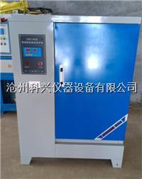 标准恒温恒湿养护箱 SHBY-40B型