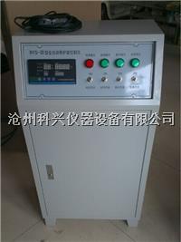 养护室控制仪 BYS-III型