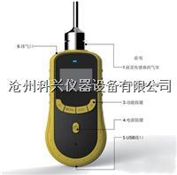 泵吸式氮气检测仪 SKY2000-N2型