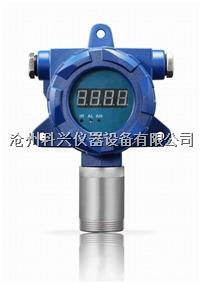 氮气检测仪 YT-95H-N2型