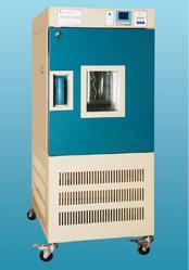 药品稳定性试验箱 YWS-250