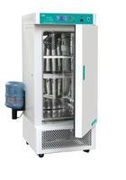 人工气候箱 RGX-300