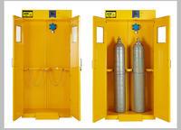 全钢双瓶气瓶柜 全钢双瓶气瓶柜