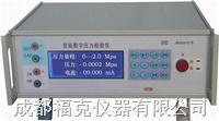 智能數字壓力校驗儀 HDP12000E