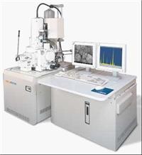 掃描電子顯微鏡