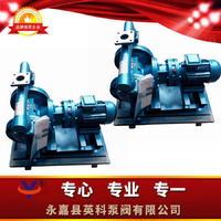 不锈钢电动隔膜泵 不锈钢电动隔膜泵厂家 不锈钢电动隔膜泵价格 不锈钢电动隔膜泵原理 DBY-P