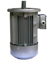 Y2112M-2 三相异步电动机