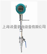 LOSEN羅森SW系列專用沼氣流量計天然氣流量計