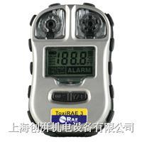 RAE硫化氢检测仪PGM-1700