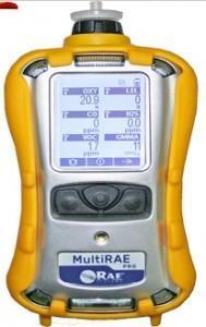 华瑞RAE复合PGM-6208二氧化碳检测仪 PGM-6208