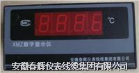 XMZ/T係列數字式顯示調節儀 XMZ XMT
