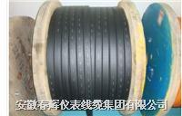 橡套扁電纜 YCWB