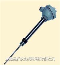 固定螺紋管接頭式一體化熱電偶/熱電阻 WRNB-82 WZPB-82