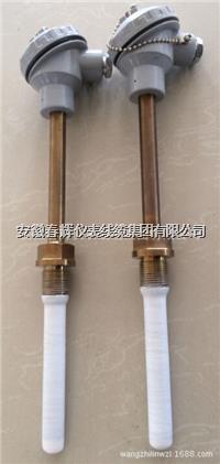 WZP-230F防腐熱電阻 WZP-230F  WZP-330F WZP-430F