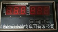JNJ3900/55雙通道瓦振監測儀