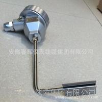 電伴熱管壁式防爆熱電阻 WZPK-24B