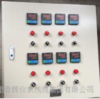 電伴熱控製箱 KZBR  CH-KZBR-3