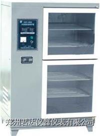 水泥标准养护箱  SHBY-40A/40B
