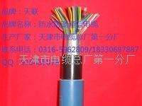 屏蔽通信电缆 ZRC-HYAP型号大全 ZRC-HYAP