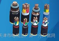 NH-VV22-0.6/1KV电缆结构图 NH-VV22-0.6/1KV电缆结构图