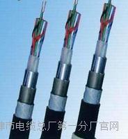 铁路信号电缆PTYA23远程控制电缆厂家 铁路信号电缆PTYA23远程控制电缆厂家