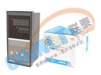 XMTS-7000 智能顯示調節儀 XMTS-7000