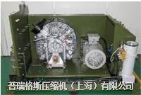 高压空压机 LSCE350-300