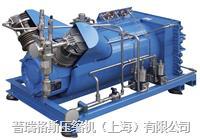 天然气汽车气瓶检测用高压压缩机 LSE