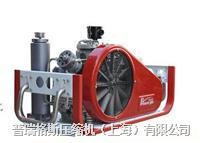 CNG汽車改裝檢測高壓壓縮機 PGA42-2.0