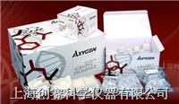 血基因组小量制备试剂盒 C08-MN-BL-GDNA-250