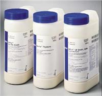 BCL-X SER 0.1ML POLY1007纯化兔抗人BCL-X l/s 多克隆检测试剂(克隆号POLY1007) C09-556361