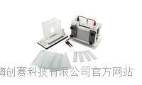 君意:JY-SCZ9垂直电泳槽 伯乐进口品质 全新设计 上海现货 JY-SCZ9