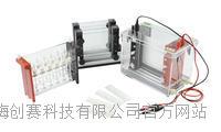 君意:JY-SX3双向电泳槽 伯乐进口品质 全新设计 上海现货 JY-SX3