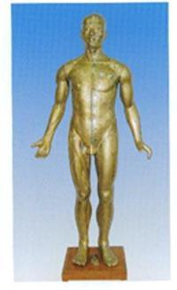 人體針灸穴位模型|銅人針灸模型 GD-0401A